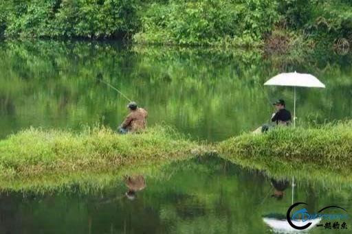 钓鱼新手遇见这些问题很正常,知道怎么回事,多练习几次就可以了-1.jpg