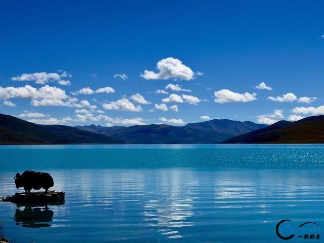中国这个神秘的湖泊中蕴藏了8亿多公斤的鱼类,却没人敢去捞-1.jpg