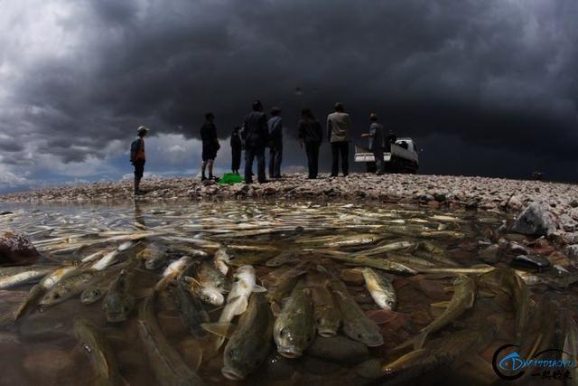 中国这个神秘的湖泊中蕴藏了8亿多公斤的鱼类,却没人敢去捞-7.jpg