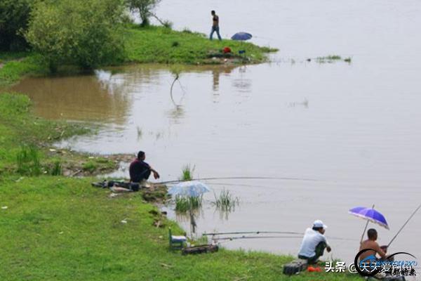 野钓选钓位的4大套路,选这些鱼扎堆的地方,渔获差不了-4.jpg