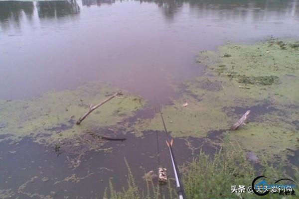 野钓选钓位的4大套路,选这些鱼扎堆的地方,渔获差不了-5.jpg
