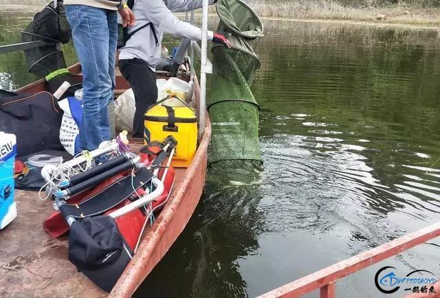 两天60斤渔获,绵阳鲁班水库老板表示近期最好鱼情-2.jpg