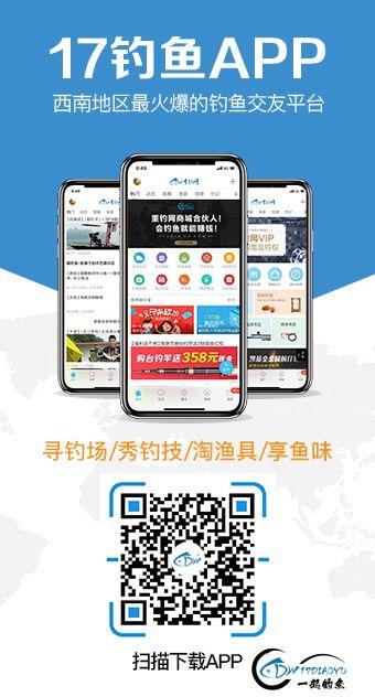 app_info.jpg