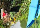 钓位开发,清水高山水库,位置保留。