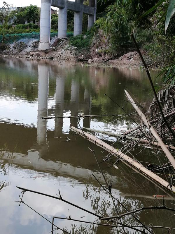 位置选择-河沟叉处,竹林下