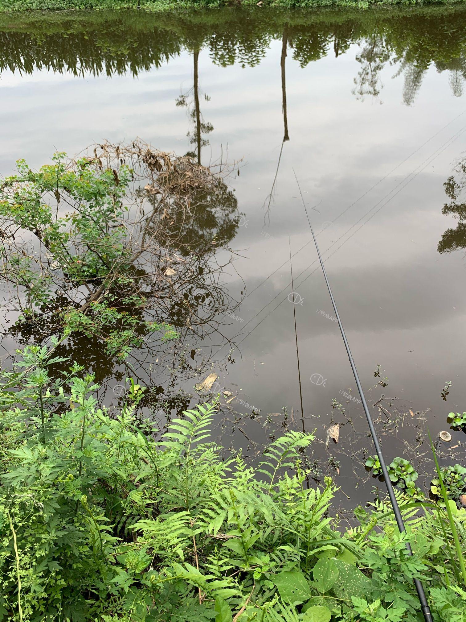 野河沟钓鱼记