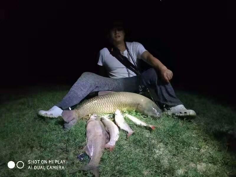 用这样的姿势把鱼获全部拍下 了