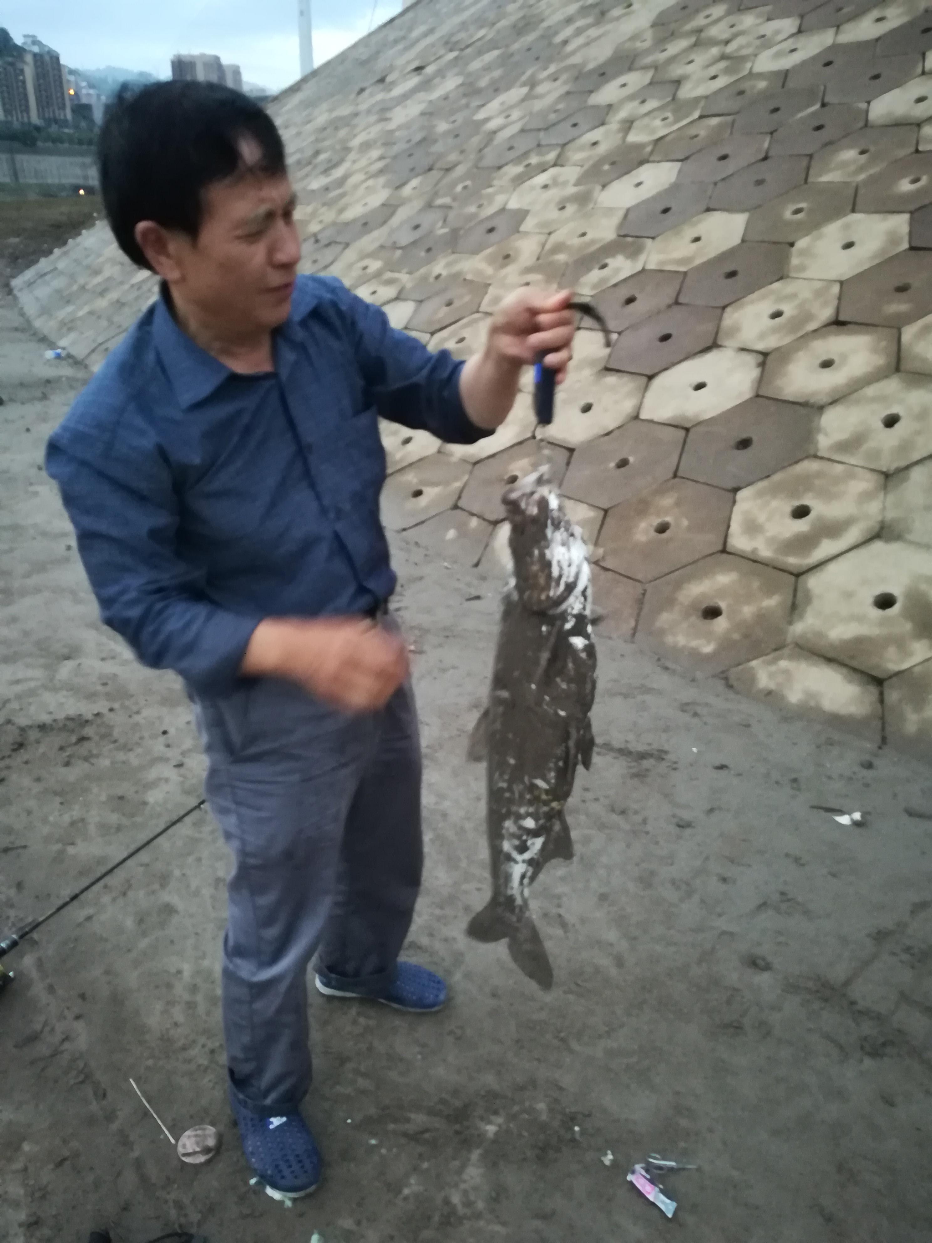 老李的鱼获