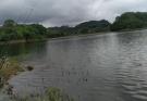 长寿湖的一天