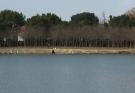 探钓人工湖