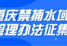 重庆市长江流域垂钓小调查[立法组委托重钓网采集]