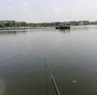 (广东东莞)钓鱼多年,今天反被鱼钩,这次痛惨了