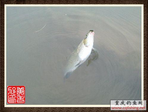 201210281058_副本.jpg
